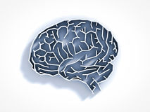 Brain maze. On white background Stock Images