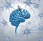 Brain Medical Research Imagem de Stock