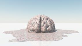 Brain Melt. S into large puddle Stock Photo