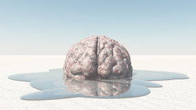 Brain Melt Royalty Free Stock Photography