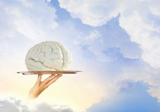 Brain on metal tray Stock Photo