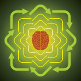 Brain and moving arrow. With green background Royalty Free Stock Photography