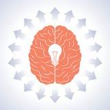 Brain and moving arrow Stock Photos