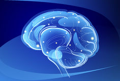 Brain Neurons Activity, Medicine Thinking Intelligence Concept Banner With Copy Space Stock Images