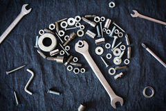 Brain of the nuts and tools Stock Image