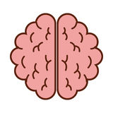 Brain organ human icon Royalty Free Stock Photography