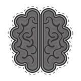 Brain organ human isolated icon Stock Photography