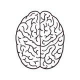 Brain outline illustration. Human brain cartoon Stock Images