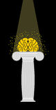 Brain on a pedestal. Light falls on  mind. Enlightenment. Vector Royalty Free Stock Image