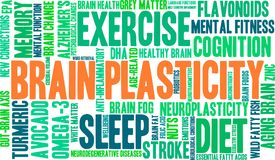 Free Brain Plasticity Word Cloud Stock Images - 108483504