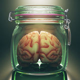 Brain In The Pot Stock Photo
