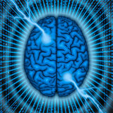 Brain power concept. Stylized concept of human brain power Royalty Free Stock Image