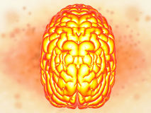 Brain power concept. With 3d rendering shiny human brain Royalty Free Stock Photography