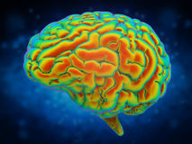 Brain power concept. With 3d rendering shiny human brain Stock Photo
