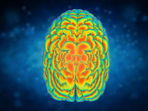 Brain power concept. With 3d rendering shiny human brain Stock Image