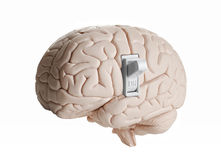Brain power. Brain model with a light switch Stock Images
