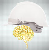 Brain protect use for business and know how protection Stock Photos