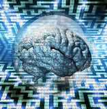 Brain Puzzle Stock Images