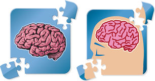 Brain puzzle. Brain inside a puzzle piece, an enigma royalty free illustration