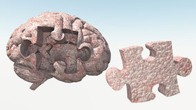 Brain Puzzle Stock Photography
