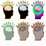Brain reflect Royalty Free Stock Photos