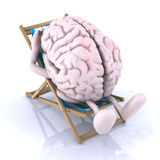 Brain that rests on a beach chair. The concept of relaxing the mind Stock Images