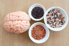 Brain and rice Stock Photography