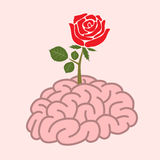 Brain and rose Royalty Free Stock Photography
