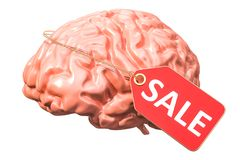 Brain for sale with price tag, 3D rendering. Isolated on white background Stock Photography