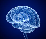 Brain scan, X-ray. Over blue background Stock Images