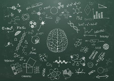 Brain science chalkboard Royalty Free Stock Photography