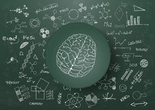 Brain science chalkboard Royalty Free Stock Photos