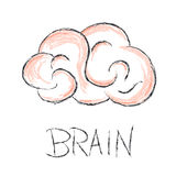 Brain scribble vector illustration Royalty Free Stock Photos