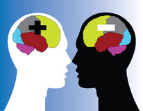 Brain. Sections of human brain (positive and negative thinking Stock Photography