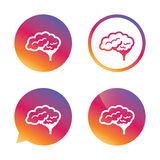 Brain sign icon. Intelligent smart mind. Royalty Free Stock Photo