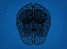 Brain Sketch - Blauwdruk Royalty-vrije Stock Foto