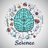 Brain sketch science concept. Human brain and physics and chemistry icons in science concept sketch vector illustration Royalty Free Stock Image