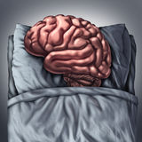 Brain Sleep. Health care and medical concept for benefits of resting the thinking organ by sleeping on a pillow in a bed as a cognitive and neurological Stock Photos