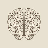 Brain storm design Royalty Free Stock Images