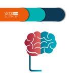 Brain storm design Stock Image