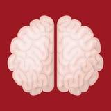 Brain storm design Stock Photo