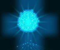 Brain storm, intelligence brain, human brain Royalty Free Stock Photos