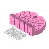 Brain structure of infographics. Brains headache human cortex.  stock illustration