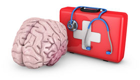 Brain and  suitcase Stock Photography