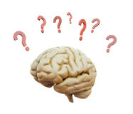 Brain surrounded with question marks royalty free stock photos