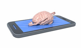 Brain that swims on the screen of the smartphone Stock Photography