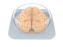 Brain tablet. Isolated on white background Stock Images