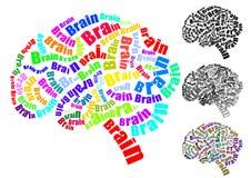 Brain Text Stock Photos