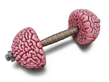 Brain training illustration Royalty Free Stock Photos