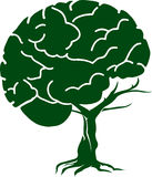 Brain tree Royalty Free Stock Images